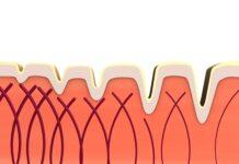 kolagen skóra